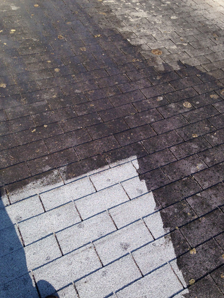 Roof Cleaning Roof Restoration Roofing Repairs